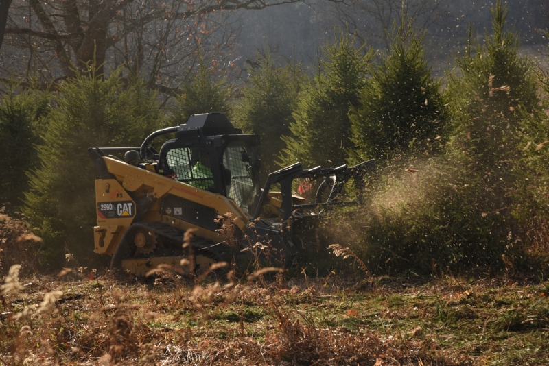 Forestry Mulching - Indiana, PA